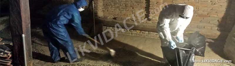 Prebiehajúce vypratanie povaly, vyčistenie podláh od trusu a zamorenia od holubov. Bratislava - Staré mesto